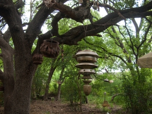 canopy-chandelier