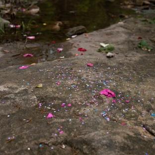 cascarones-and-flower-petals