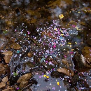 stream-sprinkles