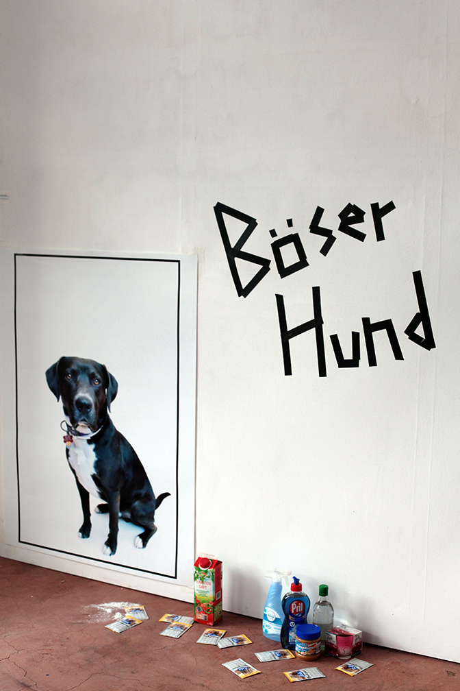 translation = bad dog. This installation shows all the products the artist used to try to get the smell off of her dog after it had bothered a skunk.