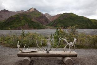 Alaska-184