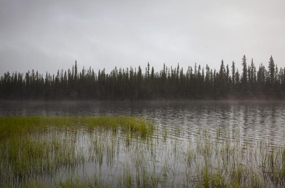 Alaska-79