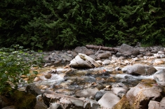 Denny Creek -17